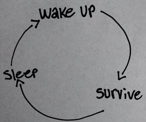 survive, sleep, and wake up image