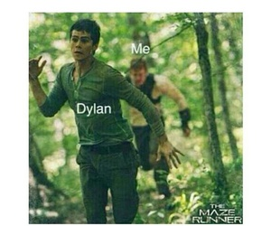 thomas, teen wolf, and the maze runner image