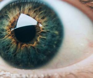 art, bright, and closeup image