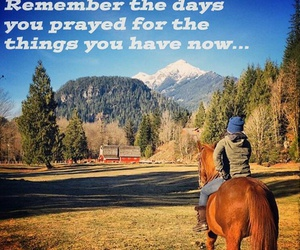 canada, horse, and quote image