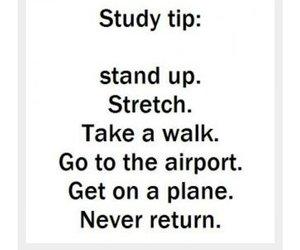 exams, final, and plane image