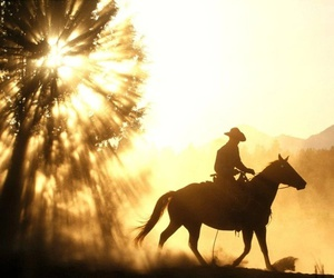 horse, cowboy, and western image