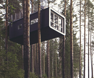 house, nature, and tree house image