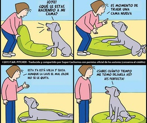 Animales, cama, and frases image