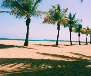 beach, chill, and palms image