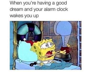 funny, Dream, and true image