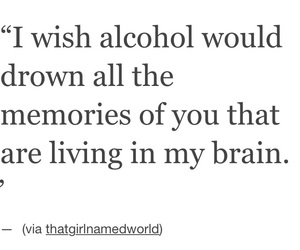 alcohol, brain, and drown image