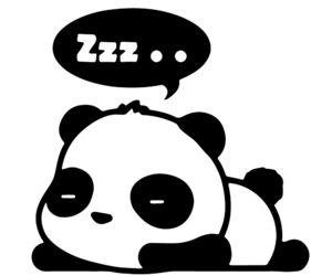 panda and sleep image