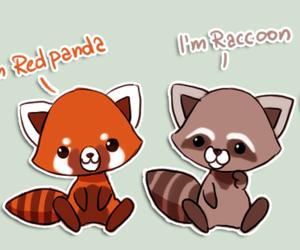 fox, panda rojo, and lovely image