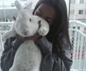 girl, tumblr, and rabbit image