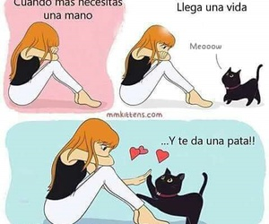 love and cat image