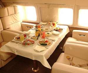 luxury, food, and airplane image