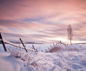 fence, photography, and sky image