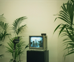 tv, plants, and green image