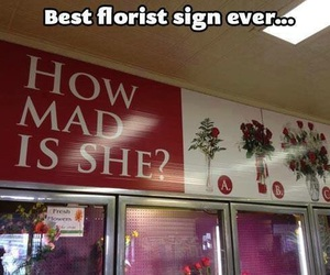 funny, flowers, and florist image