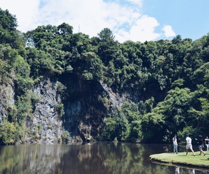 brasil, green, and nature image