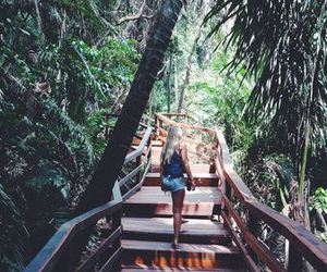 travel, green, and jungle image