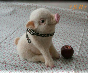 cute, pig, and piglet image