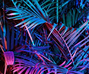 blue, indie, and iridescent image