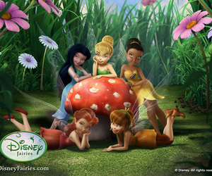 disney, Fairies, and pixie hollow image