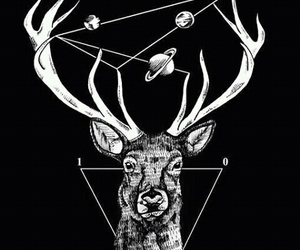 deer and planet image