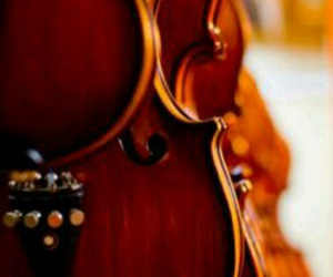 music, violin, and classical image