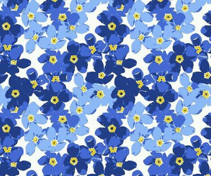 flowers, blue, and background image