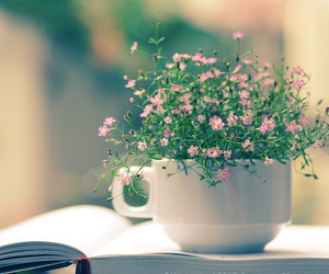 book, flowers, and image image