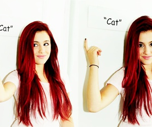 ariana grande, cat, and victorious image