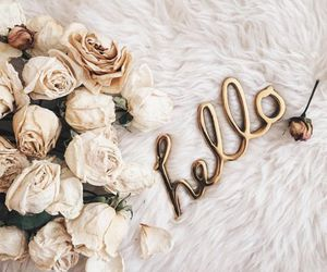 flowers, hello, and rose image