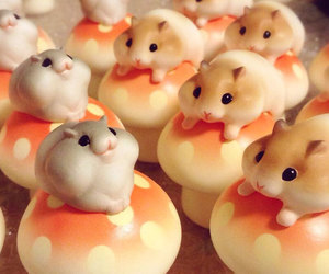cuteness, fluffy, and hamster image