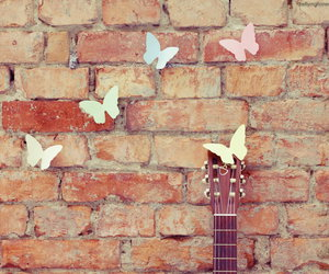butterfly, photography, and wall image