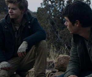 newt, scorch, and thomas image