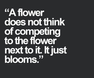 bloom, competing, and flower image