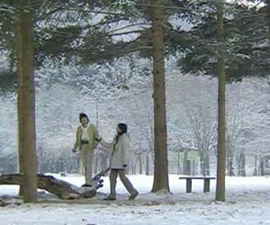 Corea, dorama, and winter sonata image