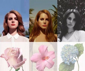 paradise, ultraviolence, and flowers image