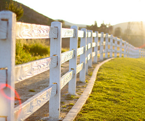 fence, field, and nature image