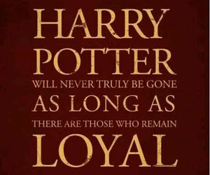 harry potter, Letter, and loyal image