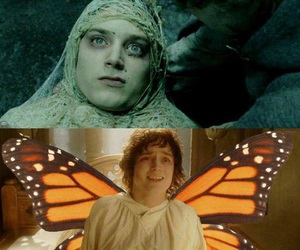 butterfly, LOTR, and frodo image