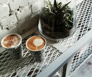 coffee, plants, and indie image