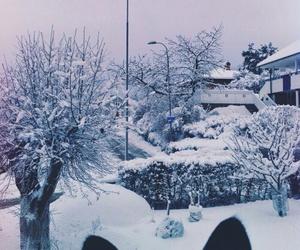 animals and winter image