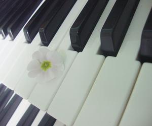 flor, flower, and organ image