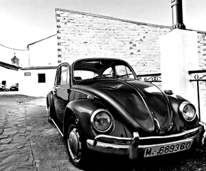 beetle, black and white, and retro image