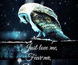 labyrinth and owl image