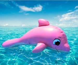 summer, pink, and dolphin image