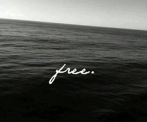 free, sea, and blue image