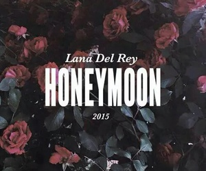 honeymoon, lana del rey, and grunge image