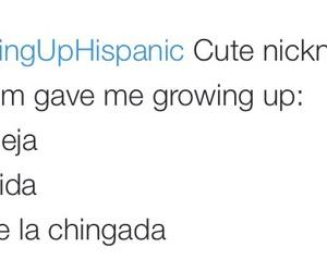 funny, lmao, and growinguphispanic image