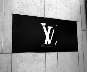 Louis Vuitton, brand, and LV image