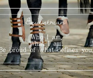 equestrian, friendship, and quote image